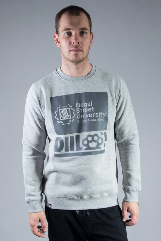 DIIL CREWNECK MISSED GREY